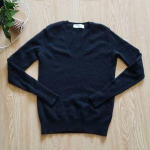 Everlane 100% cashmere v neck sweater